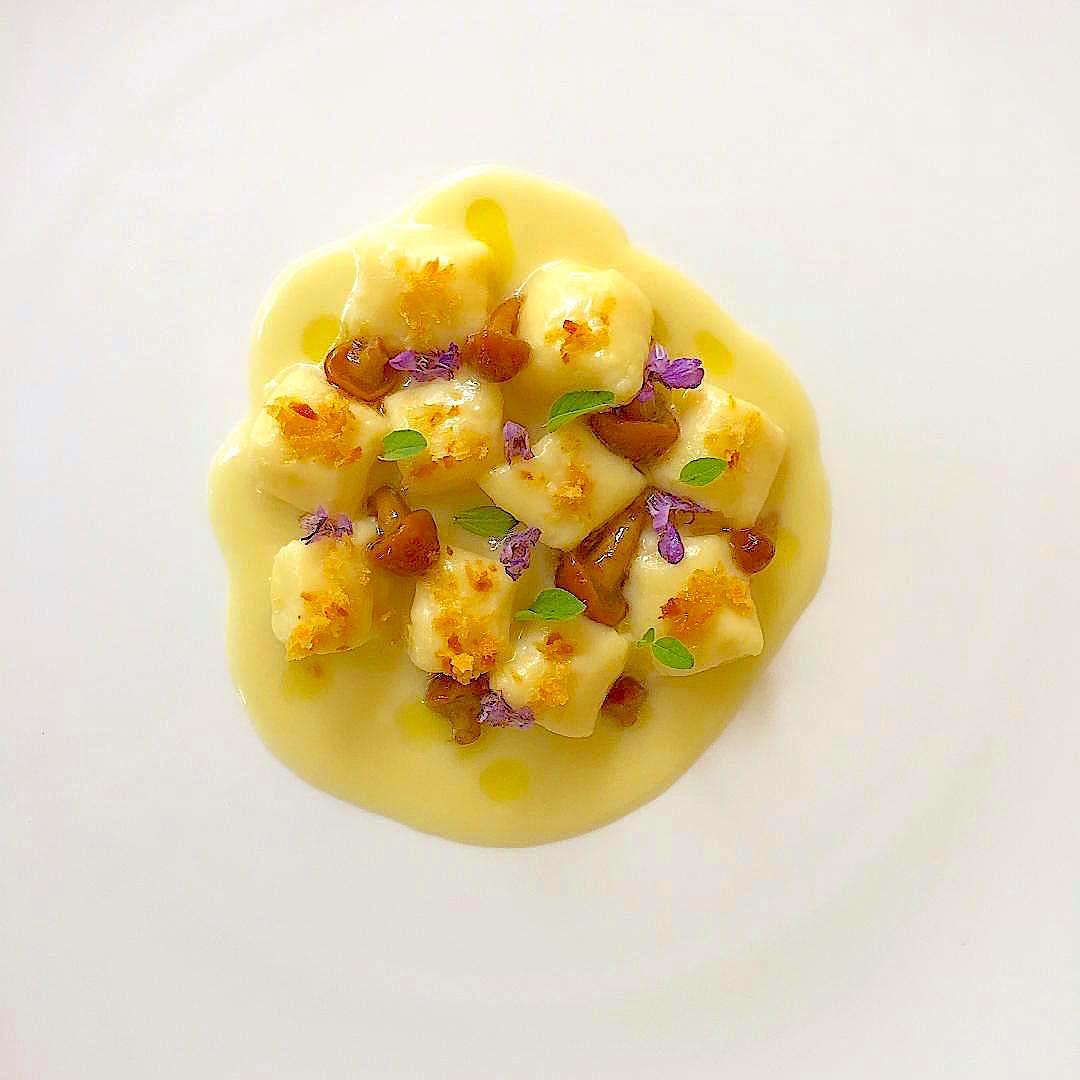 Vichyssoise recipe and Gnocchi Recipe