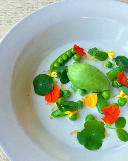 nasturtium sorbet, coconut and Thai chili