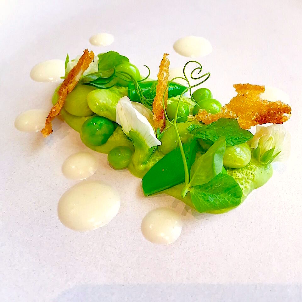 Mint and Pea Panna Cotta Recipe with coconut